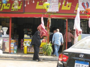 Butcher shop/Vegetable Stand near Sakanat Maadi Metro station