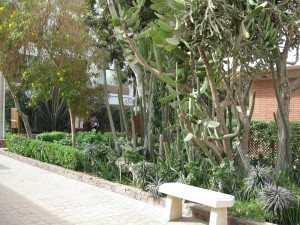 The grounds of CAC